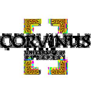 Corvinus egyetem logó